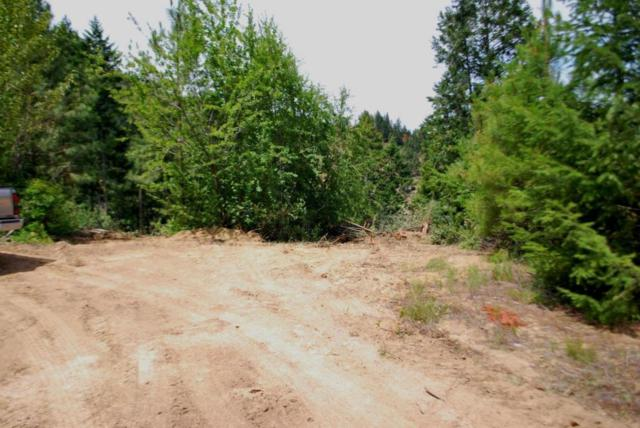 NNA Brisky Canyon Rd, Cashmere, WA 98815 (MLS #713627) :: Nick McLean Real Estate Group
