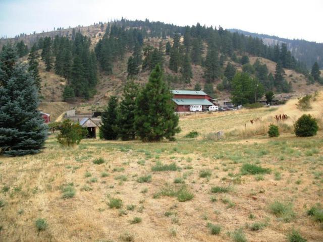 91XX Nahahum Canyon, Cashmere, WA 98815 (MLS #713933) :: Nick McLean Real Estate Group