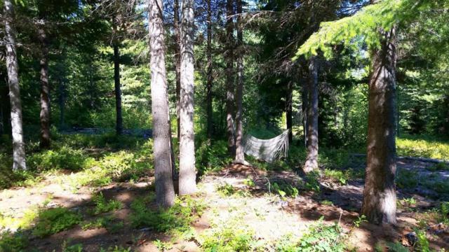 NNA Meadow Creek Road, Leavenworth, WA 98826 (MLS #714128) :: Nick McLean Real Estate Group