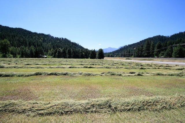 11349 Chumstick Hwy, Leavenworth, WA 98826 (MLS #714143) :: Nick McLean Real Estate Group