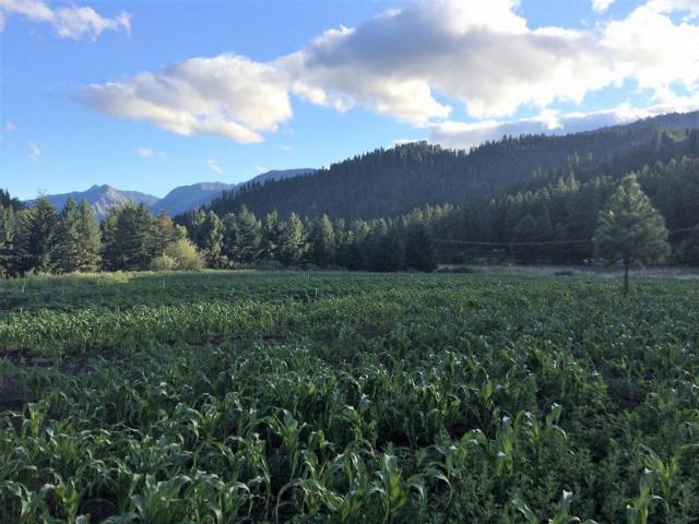 11393 Chumstick Hwy, Leavenworth, WA 98826 (MLS #714144) :: Nick McLean Real Estate Group