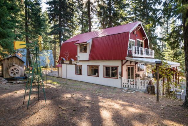 2409 Salal Dr, Leavenworth, WA 98826 (MLS #714501) :: Nick McLean Real Estate Group