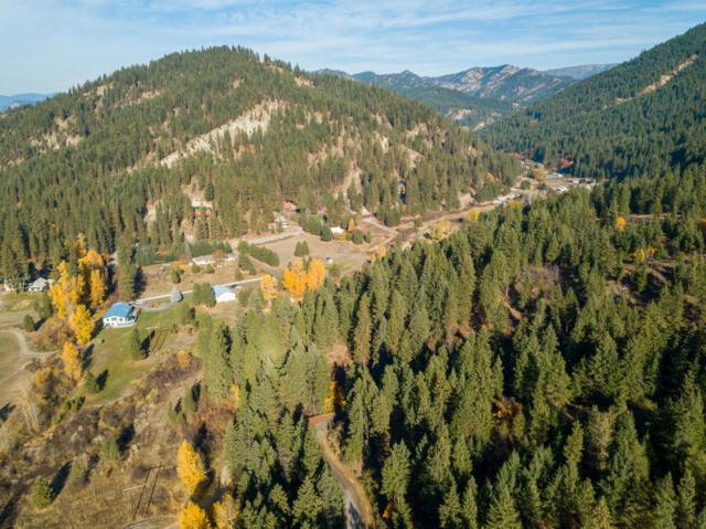 11645 Eagle Creek Rd, Leavenworth, WA 98826 (MLS #714512) :: Nick McLean Real Estate Group