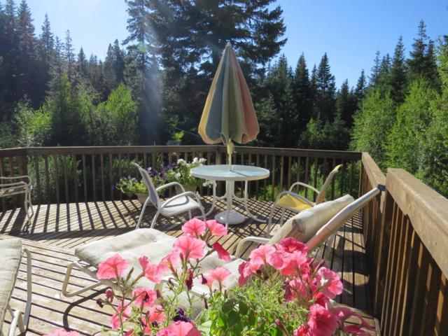 18800 Pine Cone Dr, Leavenworth, WA 98826 (MLS #715036) :: Nick McLean Real Estate Group