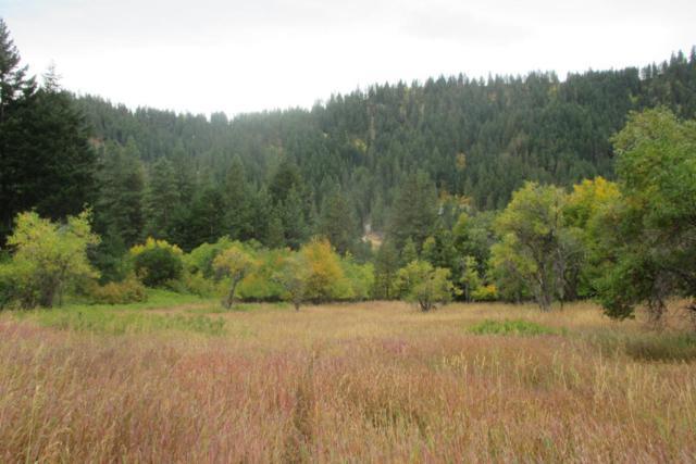 NNA Chumstick Hwy, Leavenworth, WA 98826 (MLS #715552) :: Nick McLean Real Estate Group