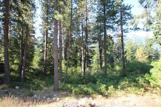 23106 Lake Wenatchee Hwy, Leavenworth, WA 98826 (MLS #715585) :: Nick McLean Real Estate Group