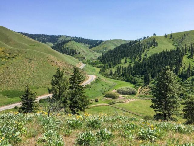 9014 Olalla Canyon Road, Cashmere, WA 98815 (MLS #715716) :: Nick McLean Real Estate Group