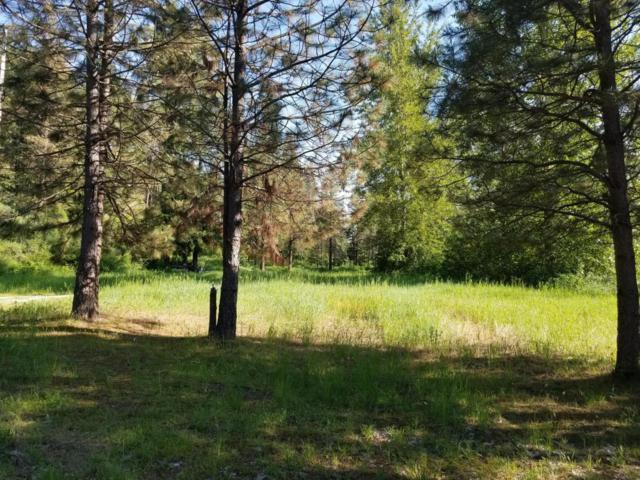 NNA Chumstick Hwy, Leavenworth, WA 98826 (MLS #715965) :: Nick McLean Real Estate Group