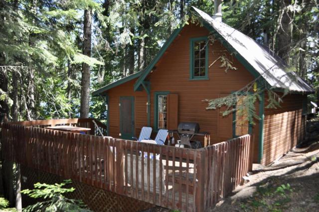 Cabin 35 South Shore Summer Cabins, Leavenworth, WA 98826 (MLS #716168) :: Nick McLean Real Estate Group