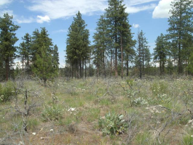 NNA Evergreen Camp Road, Chelan, WA 98816 (MLS #716213) :: Nick McLean Real Estate Group
