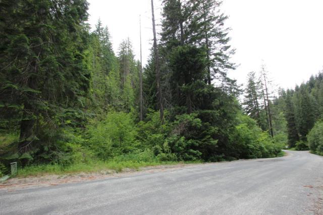 1111 Wending Lane, Leavenworth, WA 98826 (MLS #716229) :: Nick McLean Real Estate Group