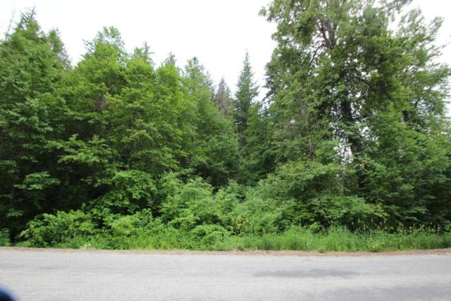 2222 Wending Lane, Leavenworth, WA 98826 (MLS #716231) :: Nick McLean Real Estate Group