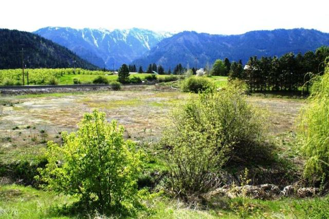 NNA North Rd, Leavenworth, WA 98826 (MLS #716332) :: Nick McLean Real Estate Group