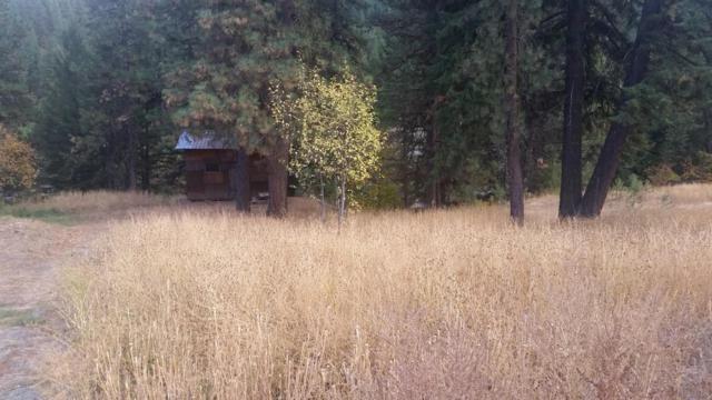 3683 Allen Ln, Peshastin, WA 98847 (MLS #716336) :: Nick McLean Real Estate Group