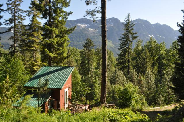 23410 Lake Wenatchee Hwy, Leavenworth, WA 98826 (MLS #716552) :: Nick McLean Real Estate Group