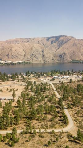 15250 Us-97 Alt, Entiat, WA 98822 (MLS #717016) :: Nick McLean Real Estate Group