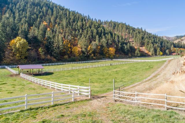 NNA Willems Rd, Cashmere, WA 98815 (MLS #717388) :: Nick McLean Real Estate Group