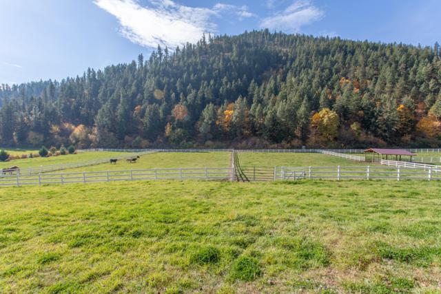 NNA Willems Rd, Cashmere, WA 98815 (MLS #717389) :: Nick McLean Real Estate Group