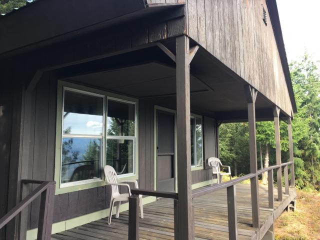 22491 Pole Ridge Rd, Leavenworth, WA 98826 (MLS #717416) :: Nick McLean Real Estate Group