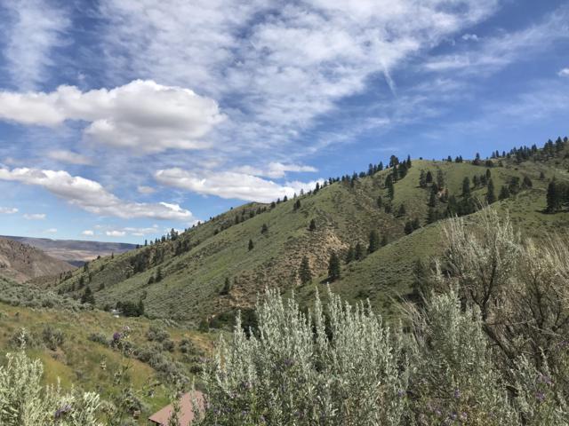 NNA Number 2 Canyon, Wenatchee, WA 98801 (MLS #717493) :: Nick McLean Real Estate Group