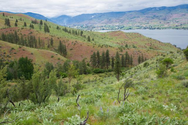 NNA Bear Mountain Ranch Road, Chelan, WA 98816 (MLS #717552) :: Nick McLean Real Estate Group