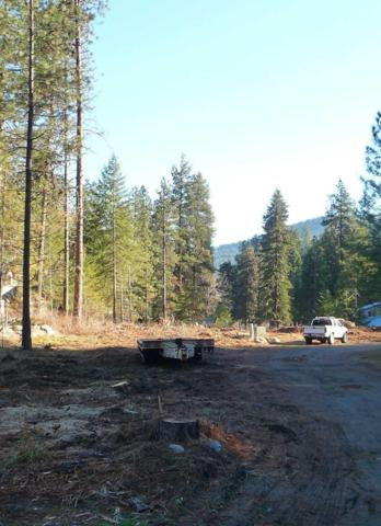 NNA Icicle Road, Leavenworth, WA 98826 (MLS #717582) :: Nick McLean Real Estate Group