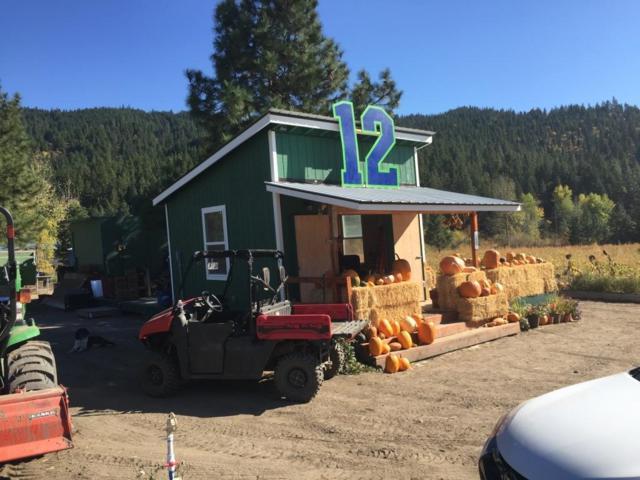 11393 Chumstick Hwy, Leavenworth, WA 98826 (MLS #718078) :: Nick McLean Real Estate Group