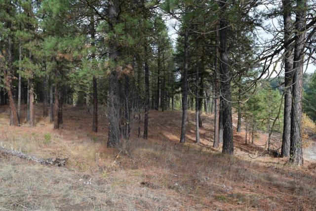 567 Juneberry Ln (Meacham Rd), Leavenworth, WA 98826 (MLS #718654) :: Nick McLean Real Estate Group