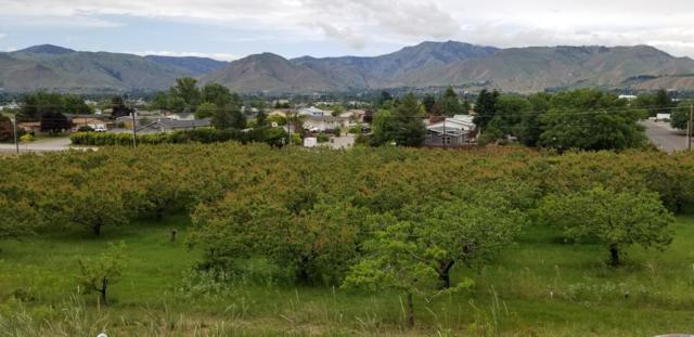 NNA NW Cascade Ave, East Wenatchee, WA 98802 (MLS #718715) :: Nick McLean Real Estate Group