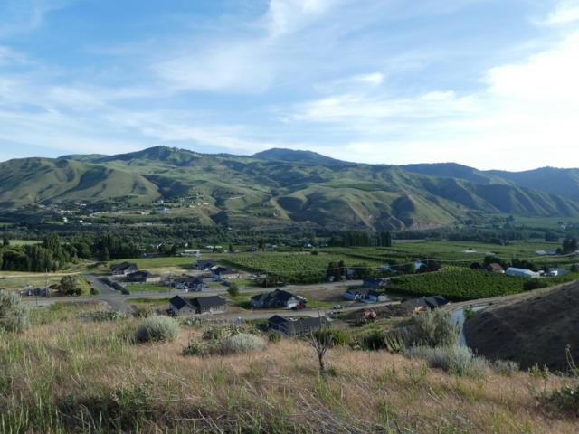 NNA Diede Hills Ln, Wenatchee, WA 98801 (MLS #718836) :: Nick McLean Real Estate Group