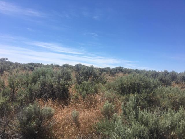 NNA W Coyote, Palisades, WA 98845 (MLS #718950) :: Nick McLean Real Estate Group