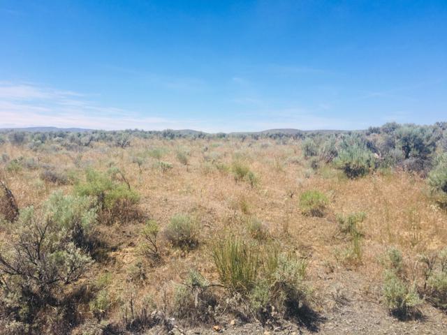NNA W Coyote, Palisades, WA 98845 (MLS #718952) :: Nick McLean Real Estate Group