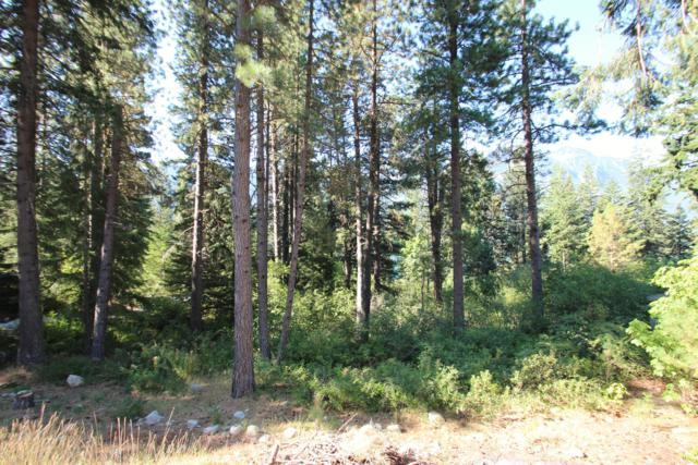 23106 Lake Wenatchee Hwy, Leavenworth, WA 98826 (MLS #718968) :: Nick McLean Real Estate Group
