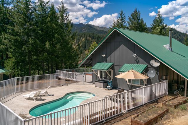 4065 Camas Creek Rd, Peshastin, WA 98847 (MLS #719226) :: Nick McLean Real Estate Group