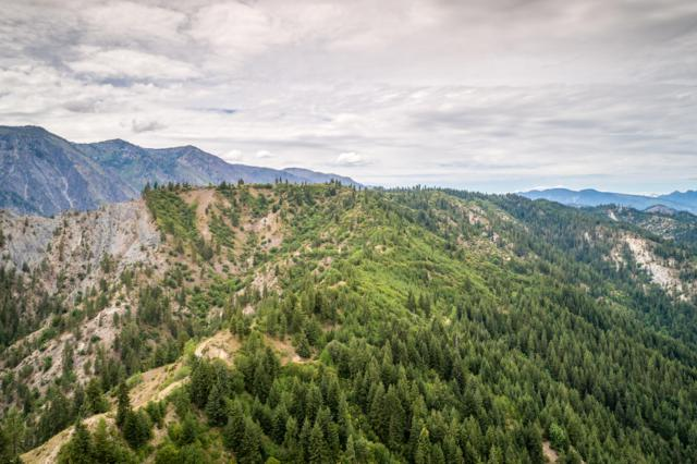NNA Forest Service 7703 Rd, Leavenworth, WA 98826 (MLS #719258) :: Nick McLean Real Estate Group