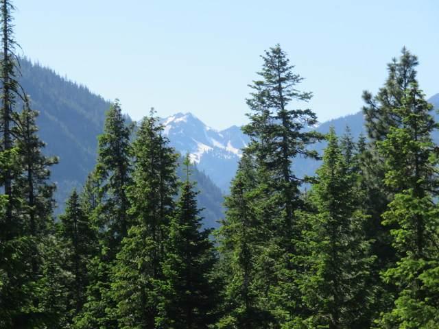 18775 Pine Cone Dr, Leavenworth, WA 98826 (MLS #719835) :: Nick McLean Real Estate Group