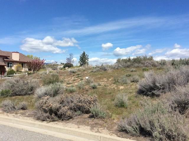 304 Desert View Pl, Orondo, WA 98843 (MLS #720794) :: Nick McLean Real Estate Group