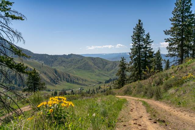 950 Chicken Farm Ln, Cashmere, WA 98815 (MLS #721247) :: Nick McLean Real Estate Group