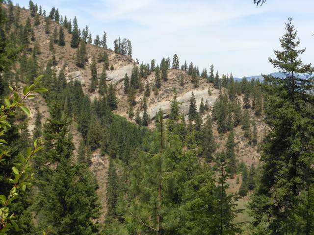 NNA Brisky Canyon Rd, Cashmere, WA 98815 (MLS #721663) :: Nick McLean Real Estate Group