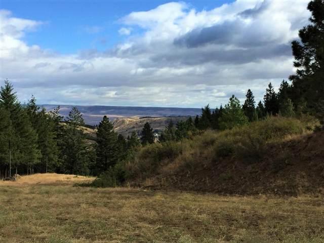 NNA Squilchuck, Wenatchee, WA 98801 (MLS #722409) :: Nick McLean Real Estate Group