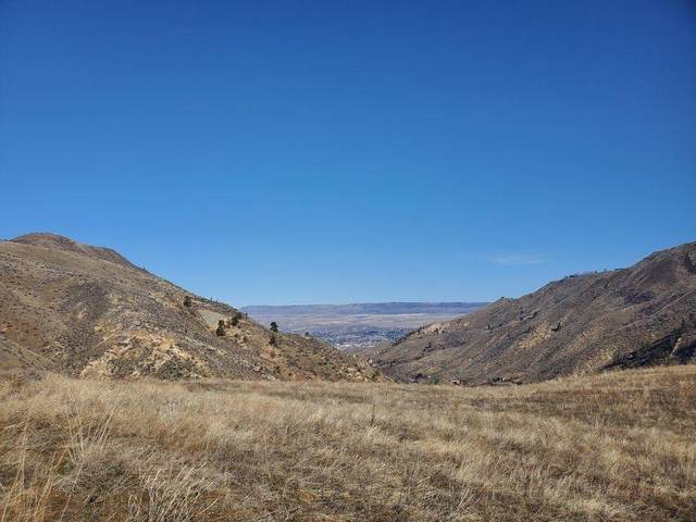 3870 Squilchuck Rd, Wenatchee, WA 98801 (MLS #722868) :: Nick McLean Real Estate Group