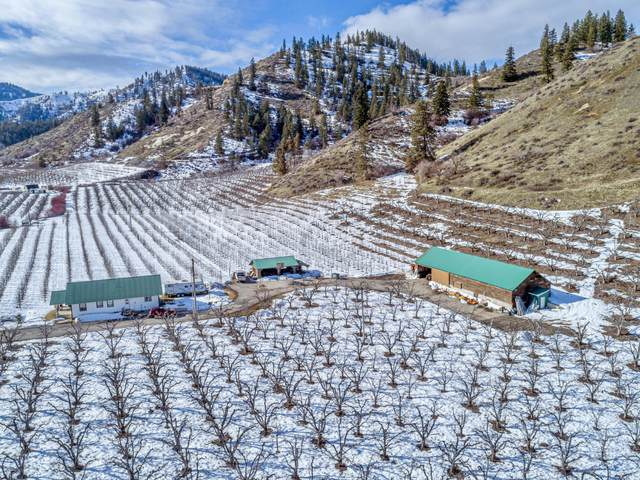 7536 Brender Canyon Rd, Cashmere, WA 98815 (MLS #723193) :: Nick McLean Real Estate Group