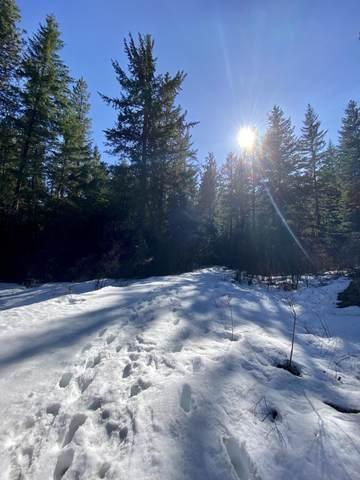 NNA Nahahum Canyon, Cashmere, WA 98815 (MLS #723557) :: Nick McLean Real Estate Group
