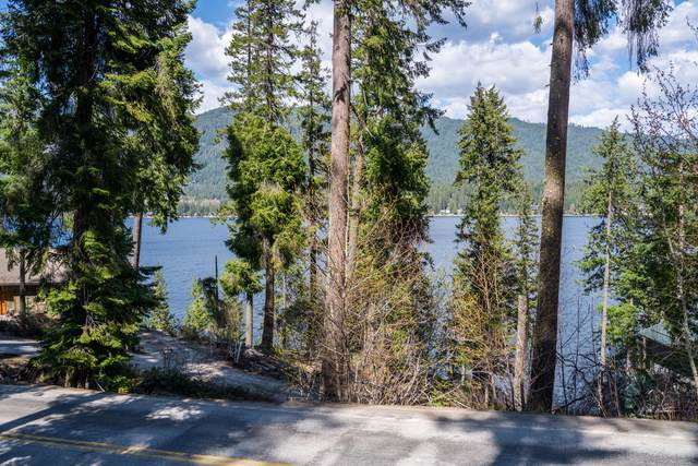 16044 Cedar Brae Rd, Leavenworth, WA 98826 (MLS #723754) :: Nick McLean Real Estate Group