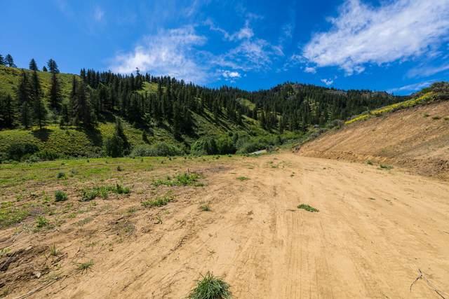 0 Number 2 Canyon Rd., Wenatchee, WA 98801 (MLS #723861) :: Nick McLean Real Estate Group