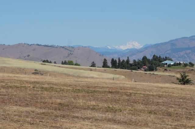 480 Bohart Rd, Wenatchee, WA 98801 (MLS #723893) :: Nick McLean Real Estate Group