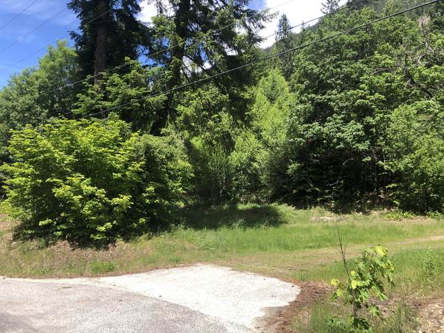 NNA Lake Wenatchee Hwy, Leavenworth, WA 98826 (MLS #724117) :: Nick McLean Real Estate Group