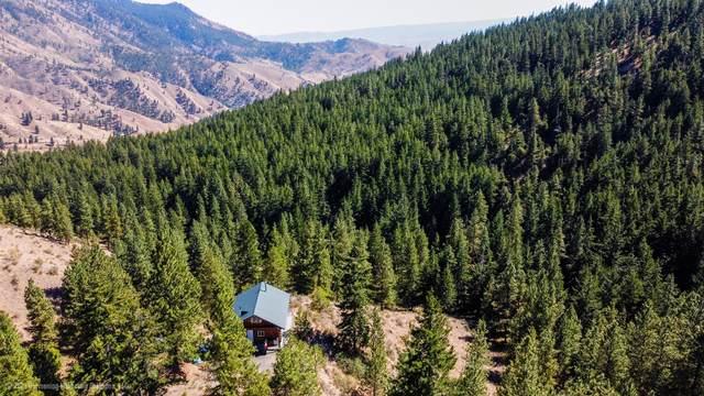 9720 Nahahum Canyon Rd, Cashmere, WA 98815 (MLS #724800) :: Nick McLean Real Estate Group