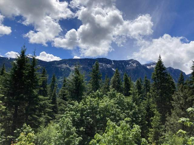 000 Lake Wenatchee Highway, Leavenworth, WA 98826 (MLS #724841) :: Nick McLean Real Estate Group