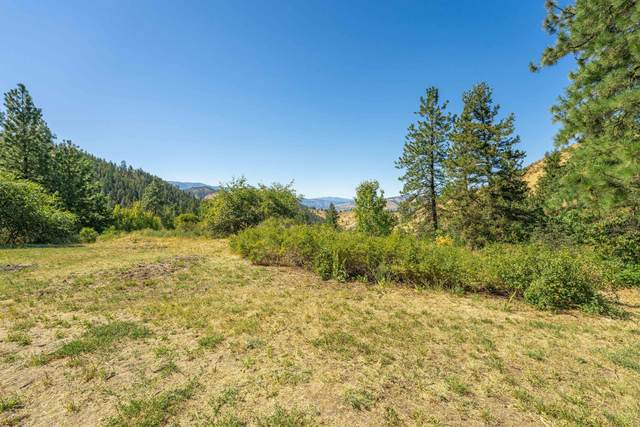 4825 Sky Meadows Rd, Cashmere, WA 98815 (MLS #724849) :: Nick McLean Real Estate Group